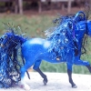 Altered Horse -